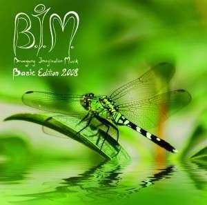 bim basic cover 300x297 1